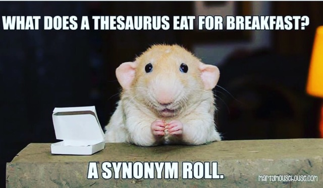 Synonym Roll Meme